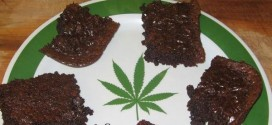 Father Unknowingly Eats Daughter's Weed Brownies